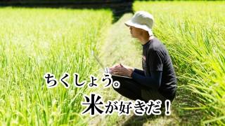 [O]君津市(千葉県)の求人情報 未経験OK お米好き集まれ!